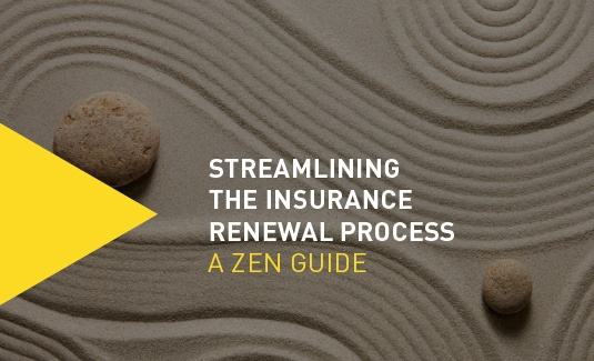 Streamlining the Insurance Renewal-A Zen Guide